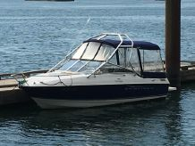 2010 Bayliner 192 Discovery