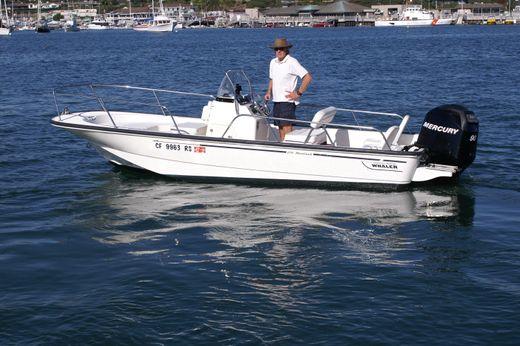 2009 Boston Whaler Montauk 17 CC