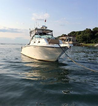 2001 Mako 293 Walk Around