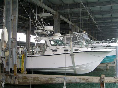 2005 True World Marine TE288