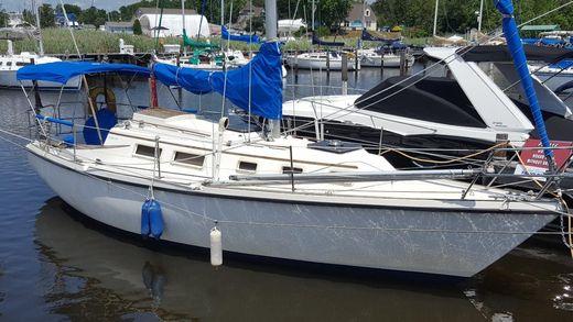1981 Seafarer 30