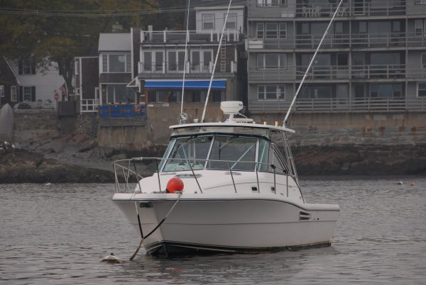 marblehead latino personals Press to search craigslist save search options close jobs + show 31 categories.