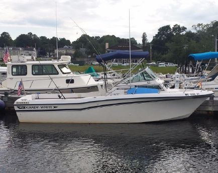 1985 Grady-White 22' Seafarer