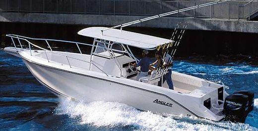 2000 Angler 2900CC
