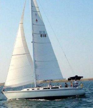 1990 Catalina Tall Rig Sloop