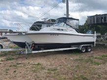 1992 Wellcraft 232 Coastal