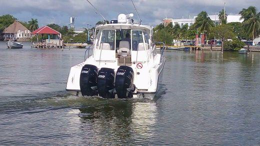 2008 Boston Whaler 345