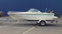 1995 Boston Whaler Dauntless 17