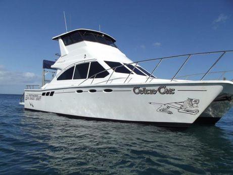 2001 Custom 40ft Power Catamaran