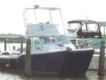 2000 Baha Cruisers King Cat