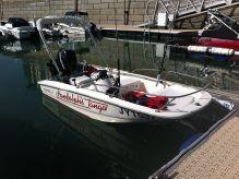 2009 Boston Whaler 130 Sport