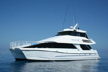 2000 Custom Charter Powercat