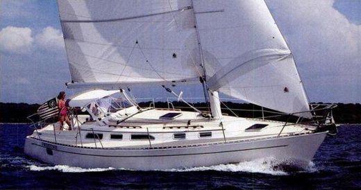 1991 Freedom Marine 38