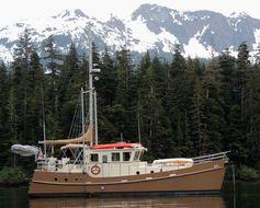 photo of  Seahorse DIESEL DUCK 462