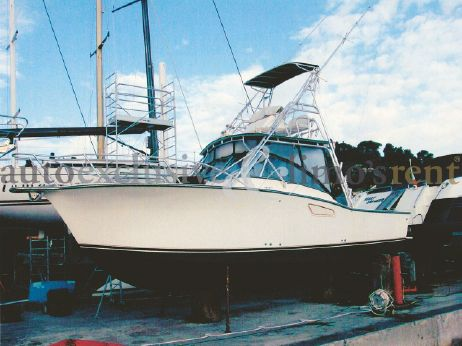 2002 Albemarle 305