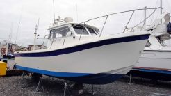 2004 Osprey 26 Fisherman