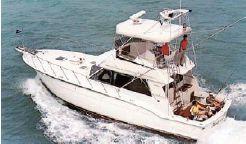 1982 Hatteras 43 Sport Fish