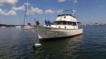 1980 Mainship Trawler