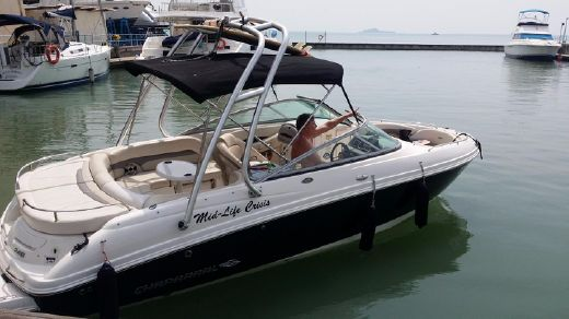 2008 Chaparral 246 SSi