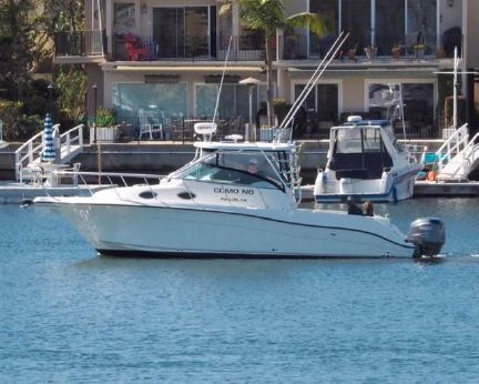 2005 Seaswirl Striper 2901 Walkaround O/B