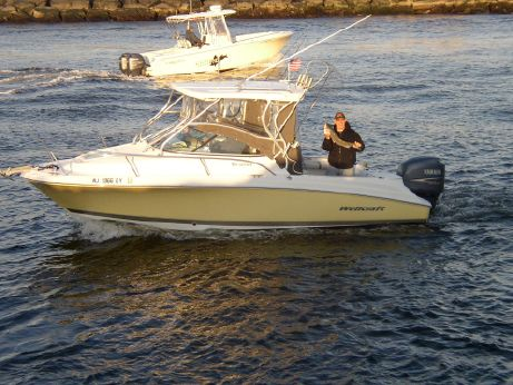 2006 Wellcraft coastal 232
