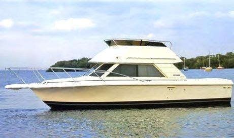2000 Phoenix SFX 29