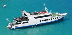 1991 Passenger Daily Cruiser