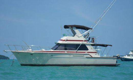 1982 Bertram 42 Motor Yacht