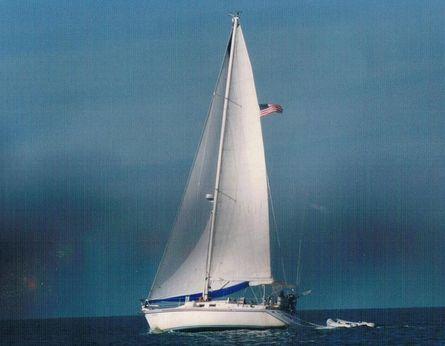 1983 Morgan NELSON MAREK 454