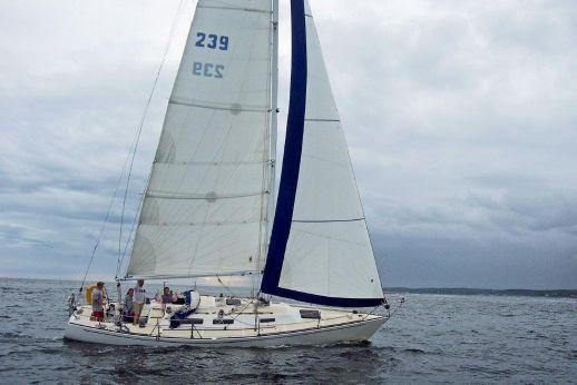 1981 J Boats J/36 J 36 J36