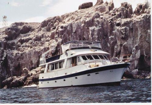 1980 Lien Hwa Custom Classic