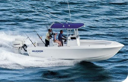 2017 Bluewater 23T