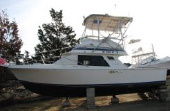 1986 Blackfin 29 Flybridge