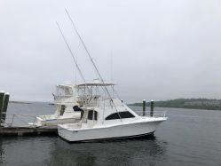 photo of  36' Luhrs 36 Convertible