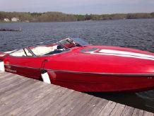 2001 Stingray 230 SX