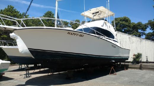 1989 Luhrs Tournament 380