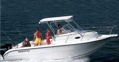 2003 Sea Fox 257 Walk Around