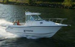 2007 Seaswirl Striper 2601 Walkaround I/O