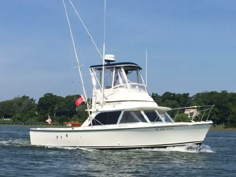 1975 Bertram 31 Sportfisher