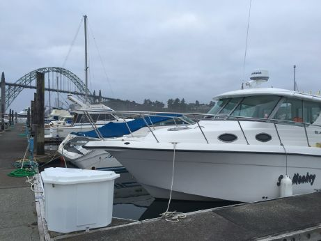 2005 Seaswirl Striper 2901 Walkaround I/O