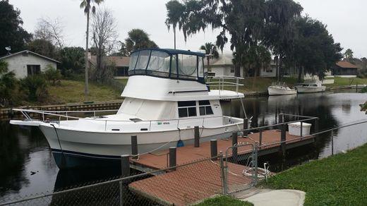 1999 Mainship 350 390 Trawler