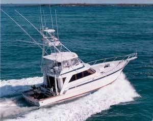 1987 Striker Sportfish