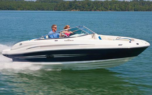 2012 Sea Ray 200 Sundeck