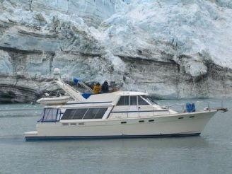 1985 Bayliner 4588 Motoryacht