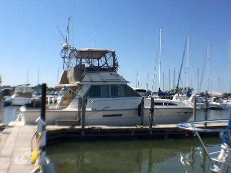 1986 Sea Ray 390 Sport Fish