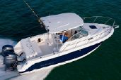 photo of 24' Robalo R245 Walkaround