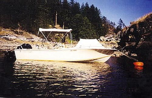 1982 Chris-Craft Scorpion