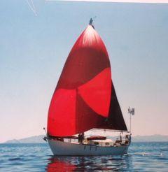 1984 Morris Frances