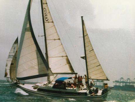 1977 Cal 3-46