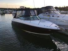 2010 Monterey 254FSX